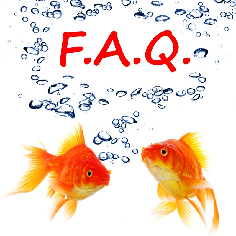 Chief Outsiders Strategic Marketing Firm - FAQs
