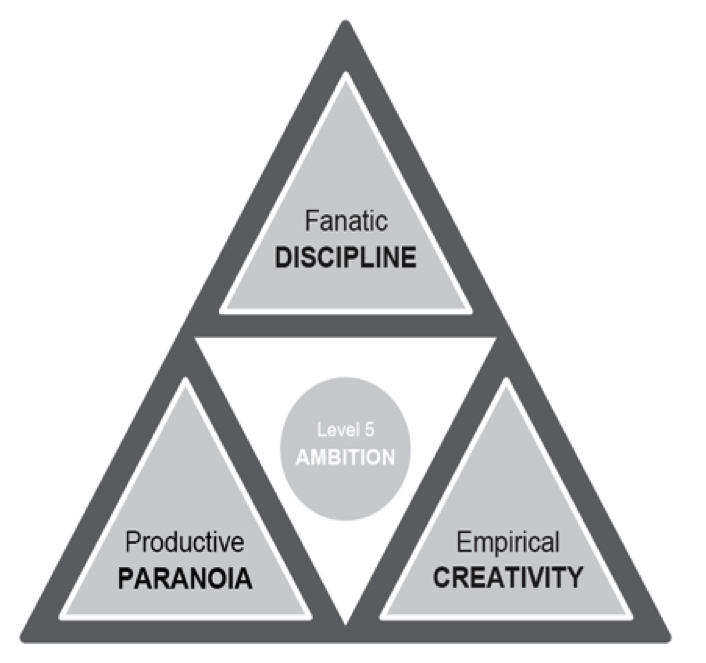 ambition pyramid for business discipline