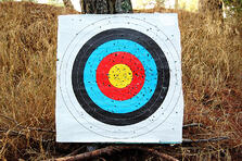 cutcaster-800917483-Colorful-shooting-target-small