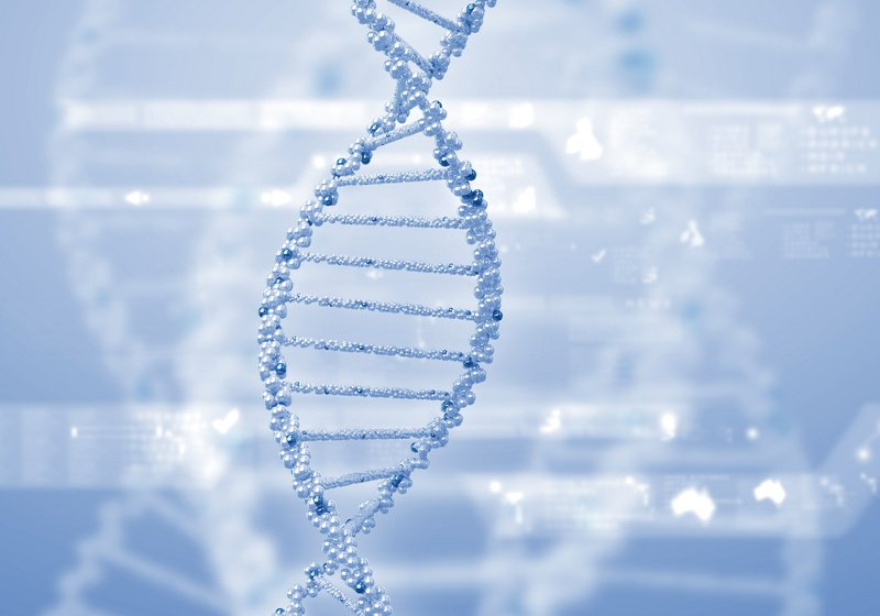 DNA - How to maintain and gain strong relationships with old and new customers