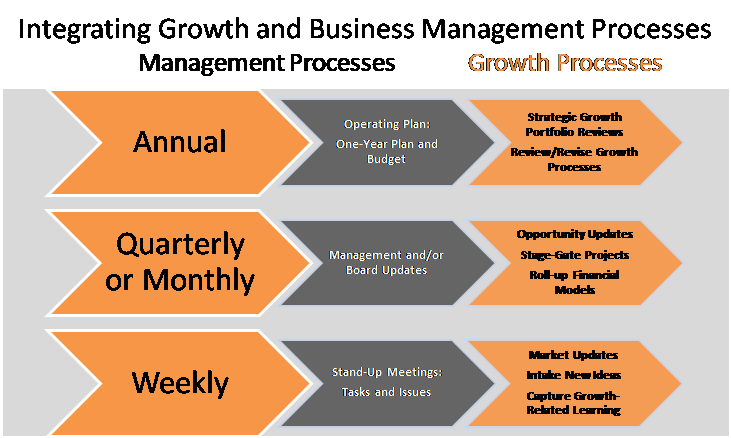Integrating-Growth-and-Business-Mmgt-Processes