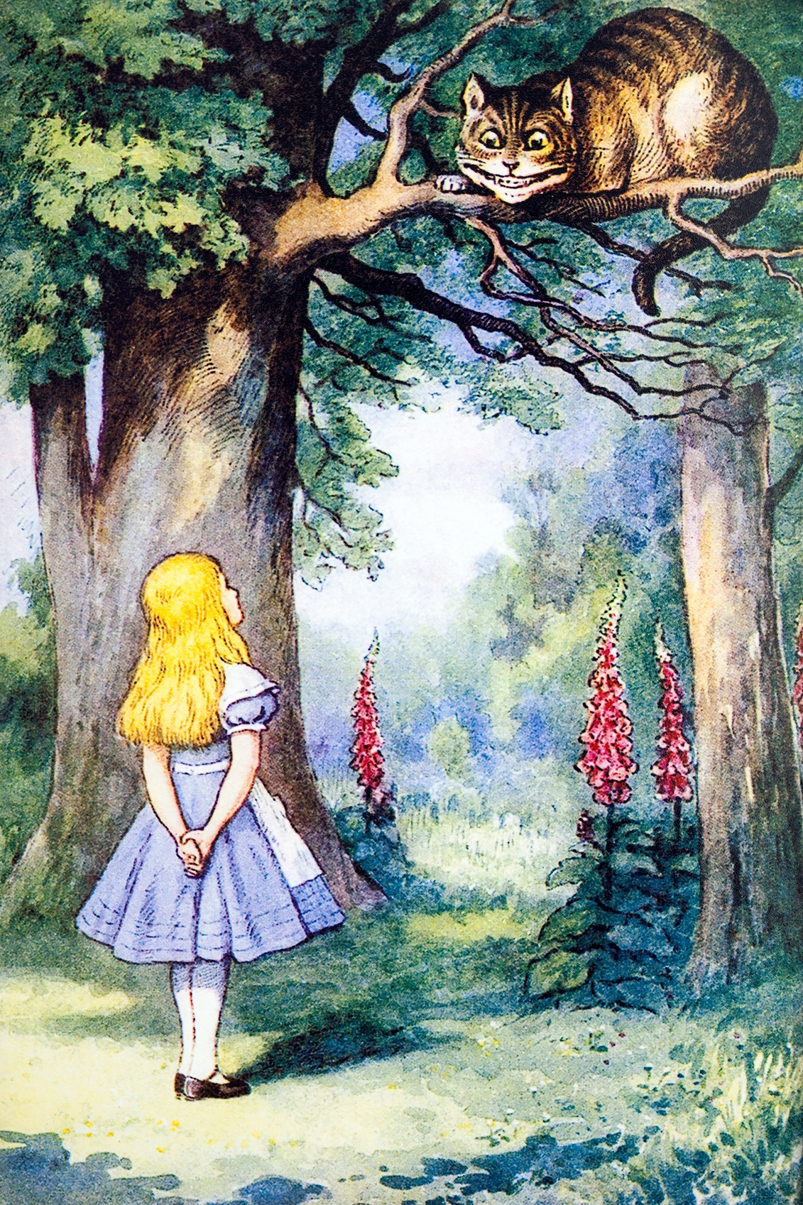 alice-in-wonderland-can-teach-ceos-about-business