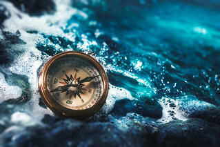 Moving to a Blue Ocean With Growth Gears: Five Steps to Chart a Course for Success