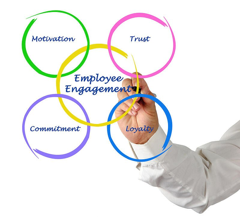 Part 3:How Does Employee Engagement Win the Growth Game?