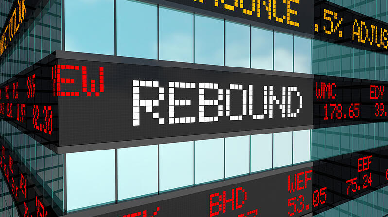 CEO Preparedness Guide for the Post-Pandemic Recovery: Planning for the Rebound